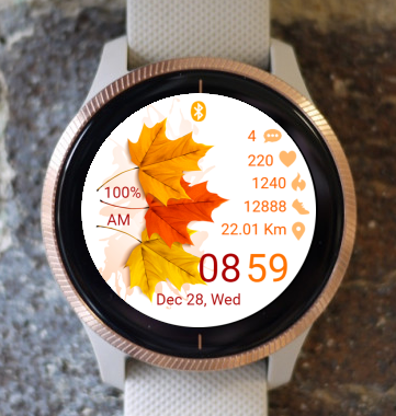 Garmin Watch Face - Autumn O1