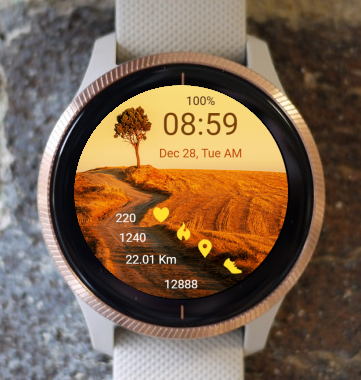 Garmin Watch Face - On The Road 03