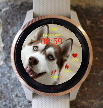 Garmin Watch Face - Beauty