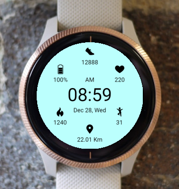 Garmin Watch Face - Aqua