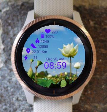 Garmin Watch Face - Lotus Field