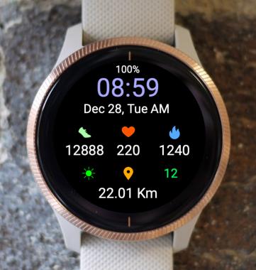 Garmin Watch Face - Echelon Run