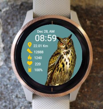 Garmin Watch Face - Owl RR