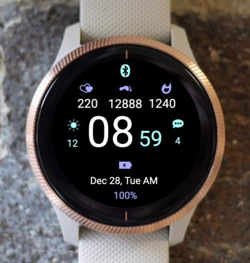 Garmin Watch Face - Echelon STR