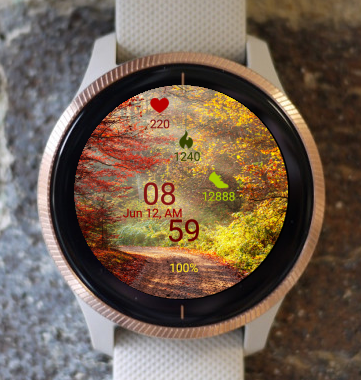 Garmin Watch Face - Autumn Forest