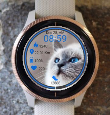 Garmin Watch Face - Kitty 2