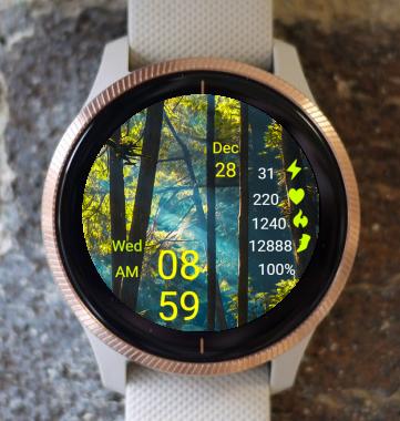 Garmin Watch Face - Forest 02