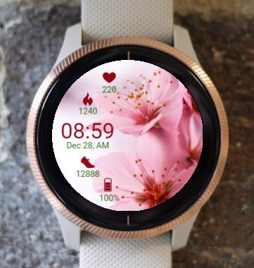Garmin Watch Face - PeachFlower