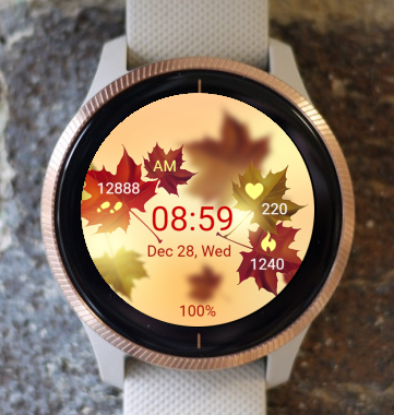 Garmin Watch Face - Autumn Sunset