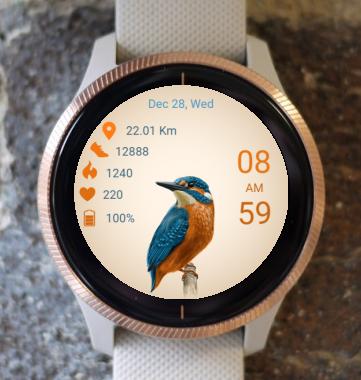 Garmin Watch Face - Bird 10