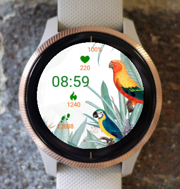 Garmin Watch Face - We Are In Pairs