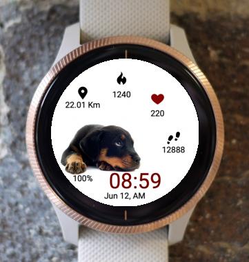 Garmin Watch Face - Puppy Time