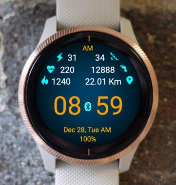 Garmin Watch Face - Active Outdoor
