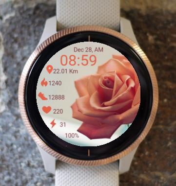 Garmin Watch Face - BRR Wonderful