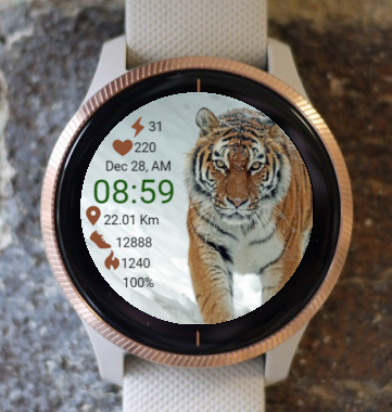 Garmin Watch Face - Attention Is King