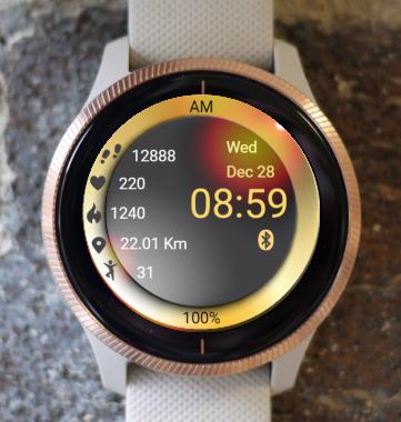 Garmin Watch Face - Plate