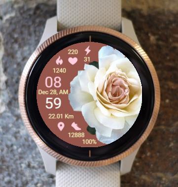 Garmin Watch Face - BRR Tenderness