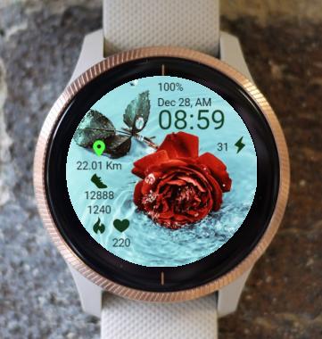 Garmin Watch Face - Rose In Water