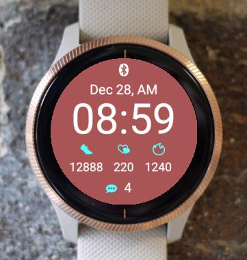 Garmin Watch Face - Big One