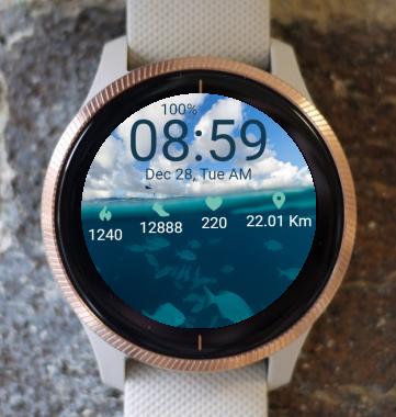 Garmin Watch Face - Under the Water