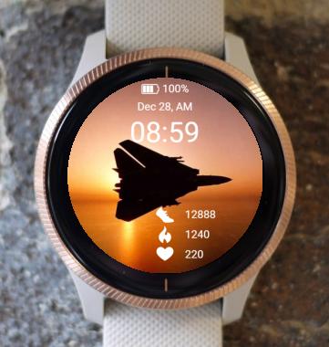 Garmin Watch Face - F-14 Tomcat