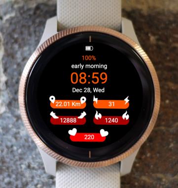 Garmin Watch Face - Porthos G004
