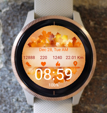 Garmin Watch Face - Autumn Line