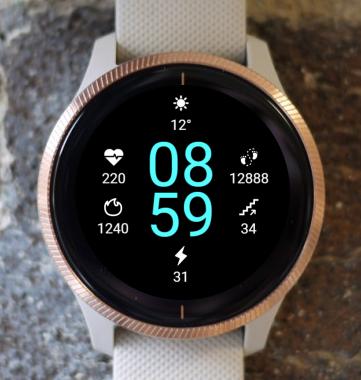 Garmin Watch Face - Digital Skin G