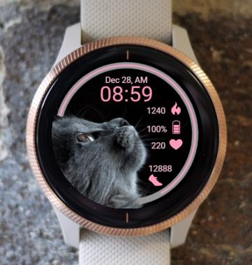 Garmin Watch Face - Kitty