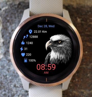 Garmin Watch Face - Bald Eagle