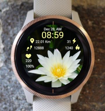 Garmin Watch Face - Ga Lotus RR