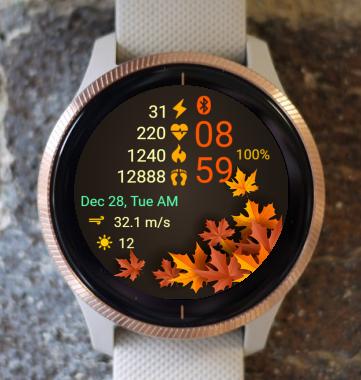 Garmin Watch Face - Autumn Leaves 06